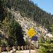 Tahoe (p8301952)