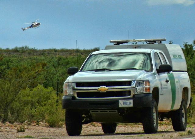 Border Patrol Roundup