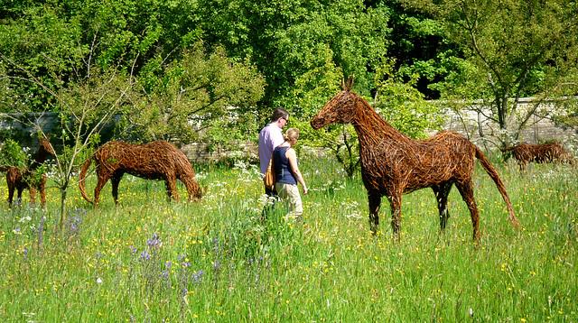 Wicker Horse Sculptures