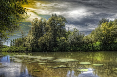 Il viaggio del fiume Po