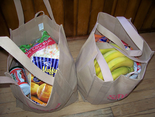 Earth day challenge #2: reusable grocery bags