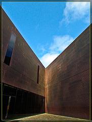 De Young Museum Architecture