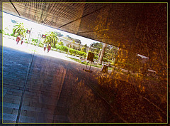 De Young Museum Wall Reflection