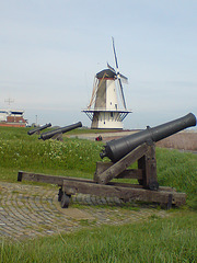 Canons on the coast