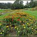 Conservatory of Flowers Garden