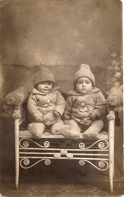 Woolly Twins