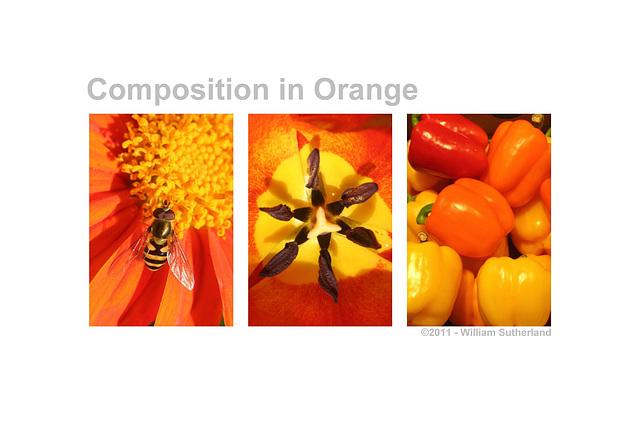 Composition in Orange 12x8
