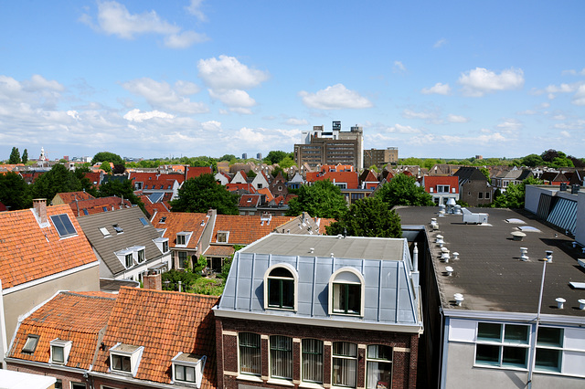 View of East Leiden