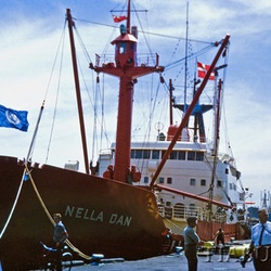 MV Nella Dan in Melbourne, December 1965