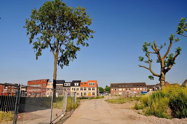 New neighbourhood in Leiden