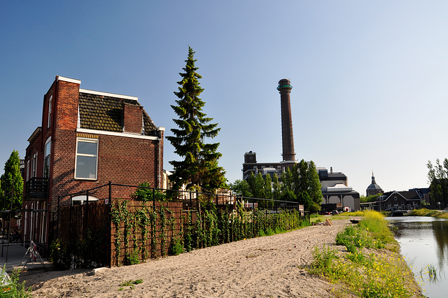 On the edge of the new neighbourhood in Leiden