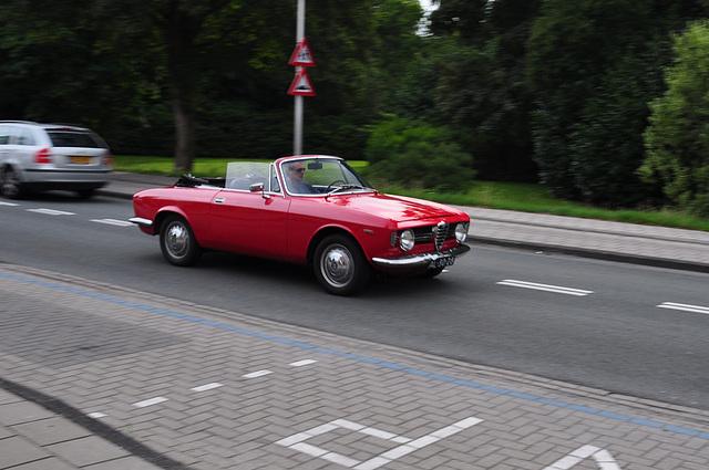 Alfa on the move