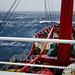 Out in the Southern Ocean
