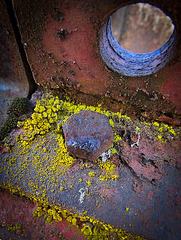 Rusty Bolt, Hole, and Green Mold
