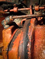 Rusty Guts Close-up