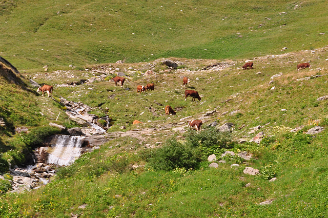 Holiday 2009 – Col de l'Iseran