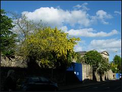 the sky before Blavatnik