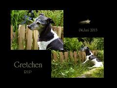 Gretchen † ... lauf schnell in's Licht ☼