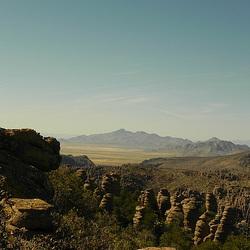 2013.03: AZ: Chiricahua 2