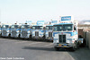 viking_kw_&_ford_tractor_line_up_slo_ca_'85_03