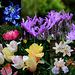 A- Montage fleurs-Jardin 2013