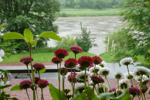 Regenwetter am 1. Juni 2013
