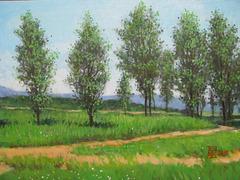 Landscape with Trees=Pejzagxo kun Arboj=나무들이 있는 풍경=林間風景_oil on canvas=olee sur tolo_33.4x45.5cm_2011_HO Song
