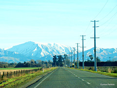 South Canterbury view