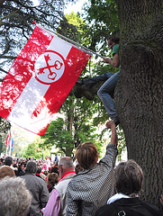 Leidens Ontzet 2011 – In the tree and flying the flag