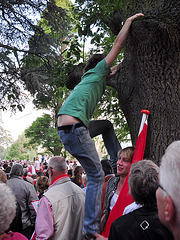 Leidens Ontzet 2011 – Climbing a tree to get a better view