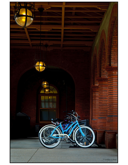 Bicycles Flagler College - Best of Show Florida State Fair 2011