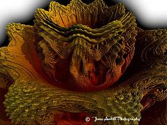 Autumnal  Fractal Flower