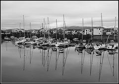 Porthmadog Harbour reflections