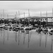 Porthmadog Harbour reflections