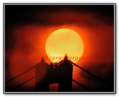 Transit of Venus 2012 -- right above the Golden Gate Bridge's tower