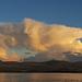 Cloud Vulture Sunset