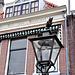"""Streetlight with an owl for café """"The Owl of Highland"""""""