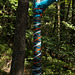 Upside down shoe amongst mother nature/ Chaussure de Maman nature