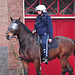 Eviction of squatters out of a building in Leiden – Police on horseback