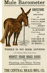 Mule Barometer
