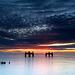 Lepe Dolphins sunrise 4