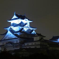 Himeji Castle at night
