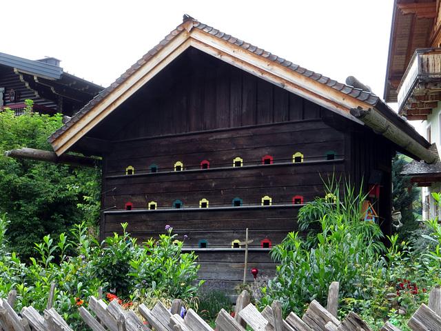 Vogel-Haus