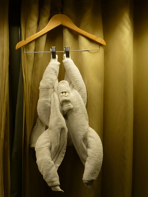 The Towel Monkey - 31 January 2014