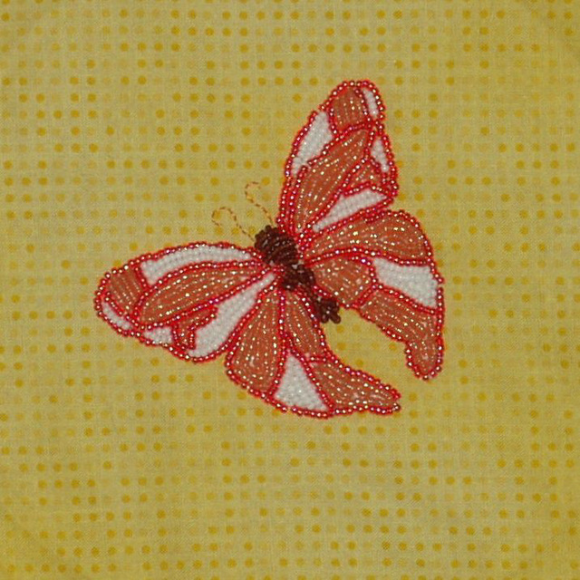 May butterfly