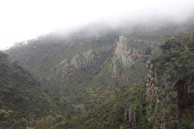 Morialta in the mist
