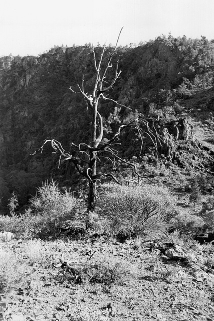 the skeleton, Italowie Gorge