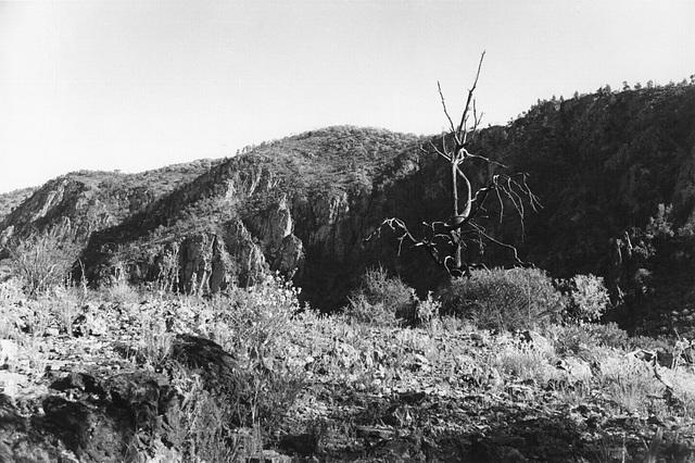 Italowie Gorge