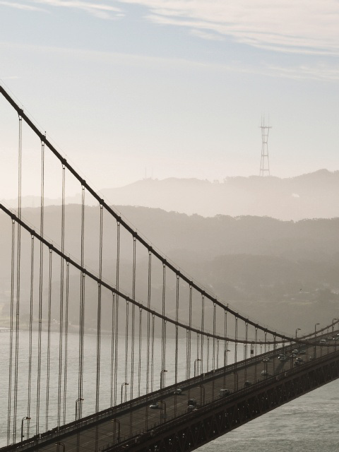 Golden Gate (p1204534)