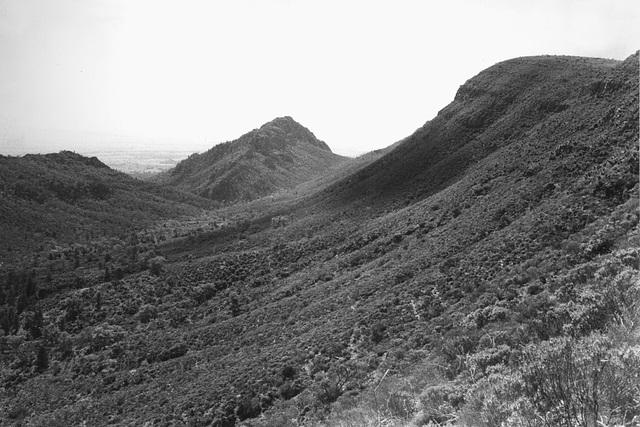 Near Mt Caernarvon